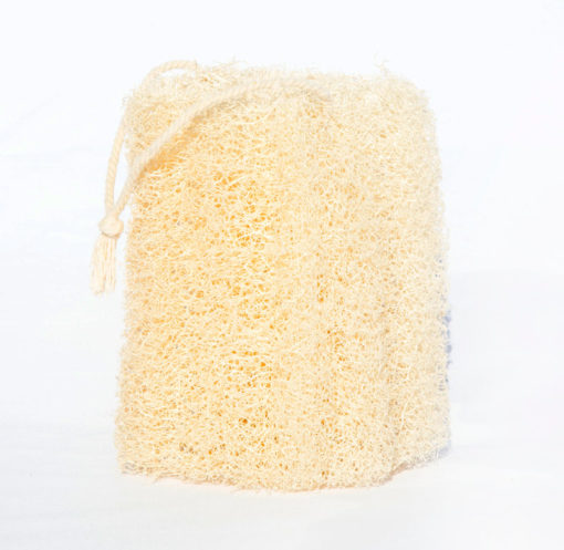 Esponja vegetal - lufa